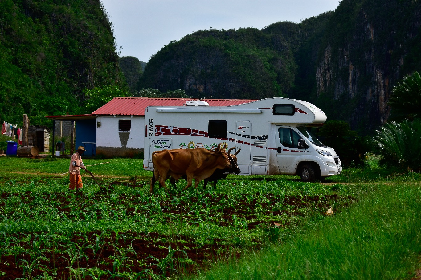 DAY 4: VINALES VALLEY, THE CUBAN COUNTRYSIDE